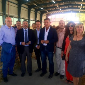 Ciudadanos reivindica la necesaria promoción de la raza ovino-segureña fuera de la provincia de Granada