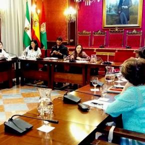 Ciudadanos pide mejoras a la difusión y publicidad de los planes municipales de ayuda a domicilio