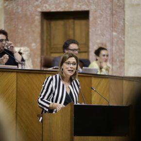 """Mar Sánchez destaca la apuesta del Gobierno andaluz por la elaboración de unos presupuestos """"realistas, ejecutables y de marcado carácter social"""""""