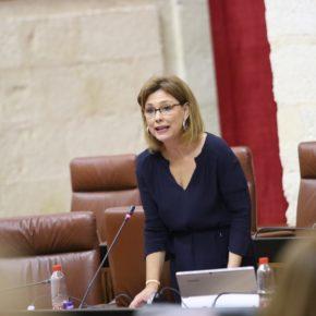 """Mar Sánchez valora las actuaciones de la Consejería de Educación para el próximo curso en relación a la FP para """"dar respuesta a los problemas de desempleo en los jóvenes"""""""