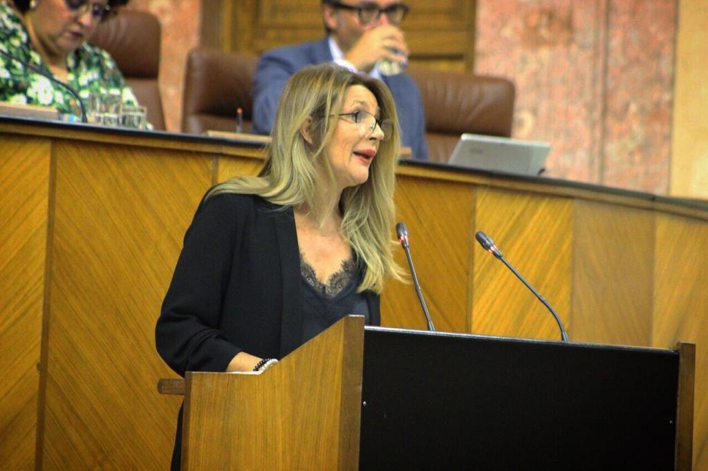 La parlamentaria granadina Concha Insúa.