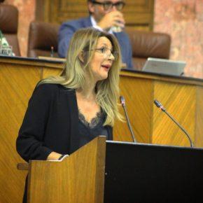 Ciudadanos valora la eficacia de la Junta en la gestión de la dependencia frente al bloqueo del PSOE