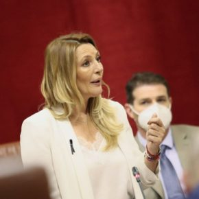 Ciudadanos recalca el impulso global a las infraestructuras granadinas gracias al Plan Andalucía en Marcha