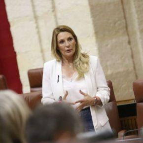 """Ciudadanos valora el esfuerzo económico del Gobierno andaluz para atender """"a pulmón"""" a los colectivos vulnerables en la provincia de Granada"""