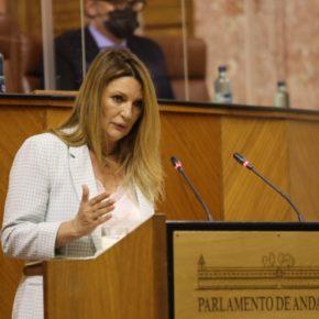 """Insúa: """"Ya son más de 2.000 los comercios granadinos que han confiado en estas ayudas del Gobierno andaluz"""""""